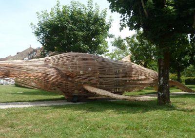 Baleine Saline Royale